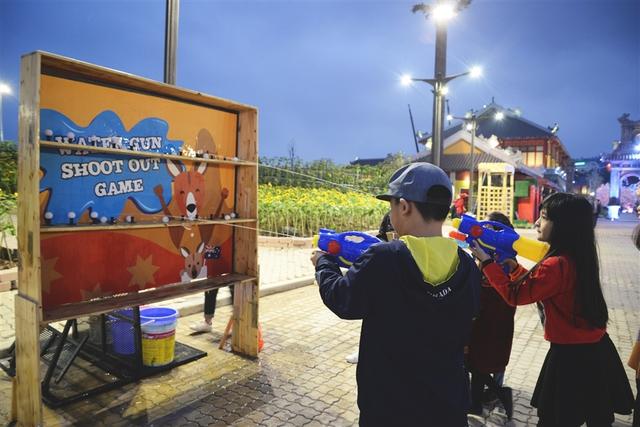 Vui tưng bừng với Lễ hội kỳ quan muôn sắc hoa tại Sun World Halong Complex - Ảnh 7.