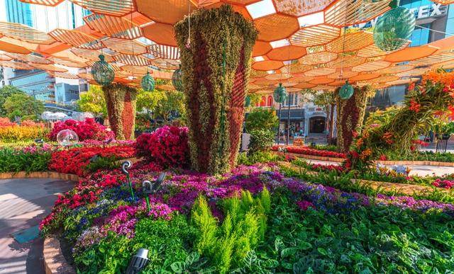 Mãn nhãn đường hoa Nguyễn Huệ đẹp rực rỡ ngày đầu năm - Ảnh 6.