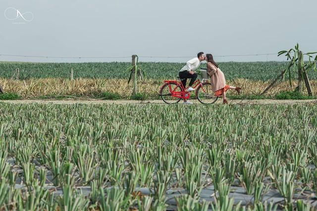 """Dân tình phát sốt với bộ ảnh cưới trong trẻo """"Vẽ giấc mơ tình yêu"""" trên cánh đồng dứa Ninh Bình - Ảnh 13."""
