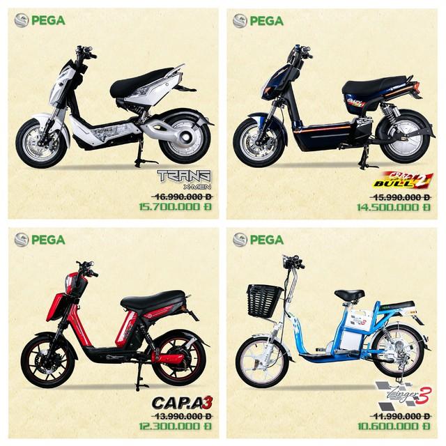 Xe điện học sinh PEGA công bố giá mới cực sốc năm 2018 - Ảnh 1.