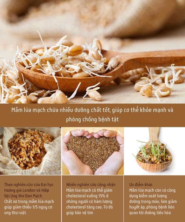 Công dụng không ngờ của nước giải khát lên men tự nhiên từ mầm lúa mạch: Tốt cho tiêu hóa, giúp cơ thể khỏe đẹp mỗi ngày - Ảnh 1.