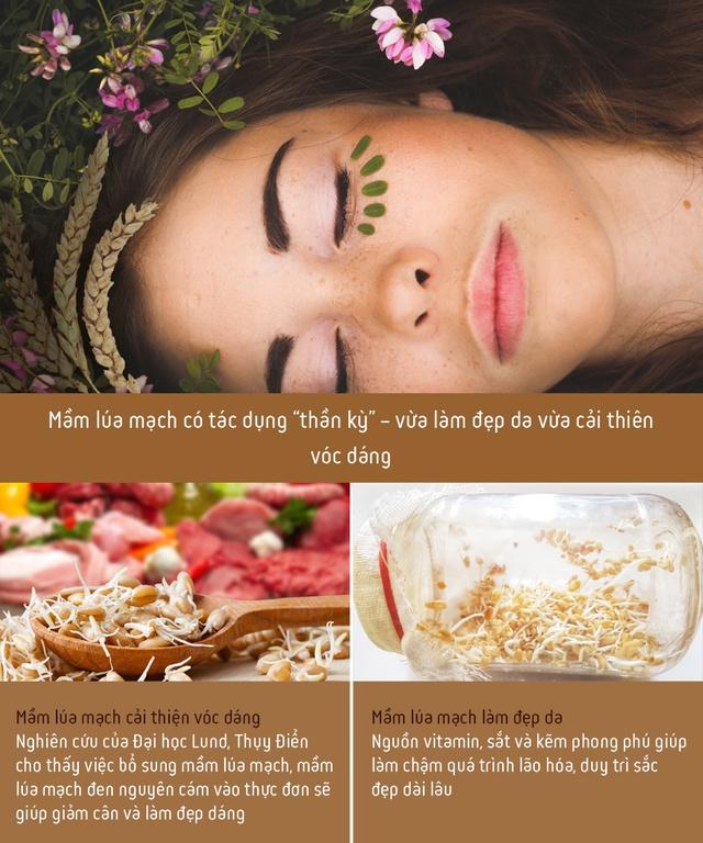 Công dụng không ngờ của nước giải khát lên men tự nhiên từ mầm lúa mạch: Tốt cho tiêu hóa, giúp cơ thể khỏe đẹp mỗi ngày - Ảnh 2.