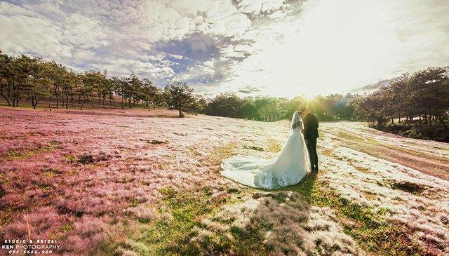 9 homestay Đà Lạt chụp ảnh cưới tuyệt đẹp- Ảnh 1.