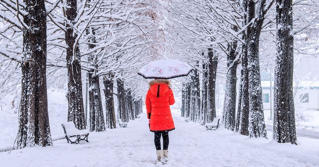 Đến xứ Hàn, thực hiện giấc mơ chạm vào tuyết trắng - Ảnh 3.