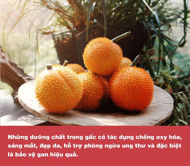Chứa hàm lượng dưỡng chất cao gấp nhiều lần cà chua, cà rốt; gấc chính là thực phẩm vàng dành cho lá gan - Ảnh 4.