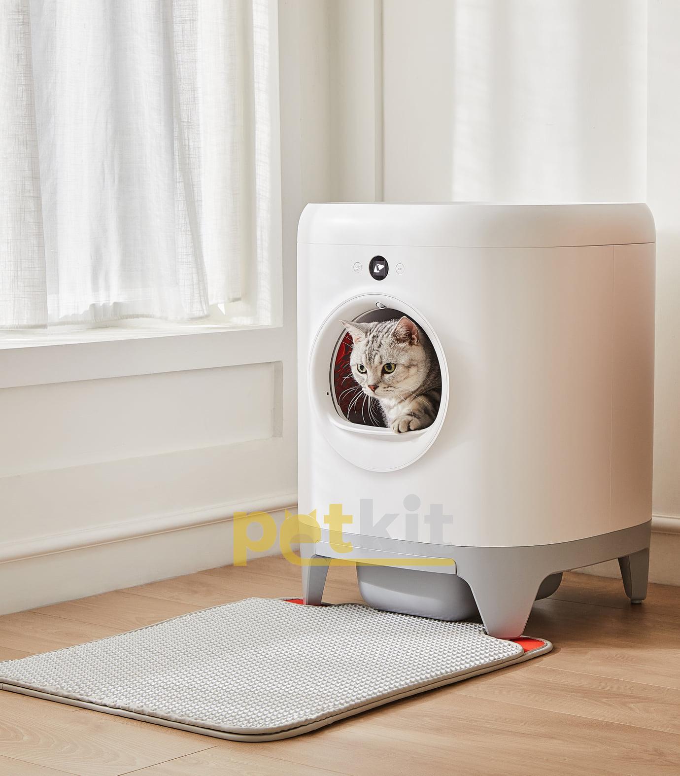 Nuôi mèo thời 4.0, sen nên sắm mấy món đồ công nghệ này để chăm boss nhàn hạ - Ảnh 7.