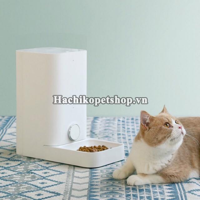 Nuôi mèo thời 4.0, sen nên sắm mấy món đồ công nghệ này để chăm boss nhàn hạ - Ảnh 4.