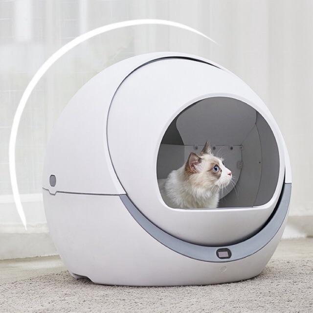 Nuôi mèo thời 4.0, sen nên sắm mấy món đồ công nghệ này để chăm boss nhàn hạ - Ảnh 8.