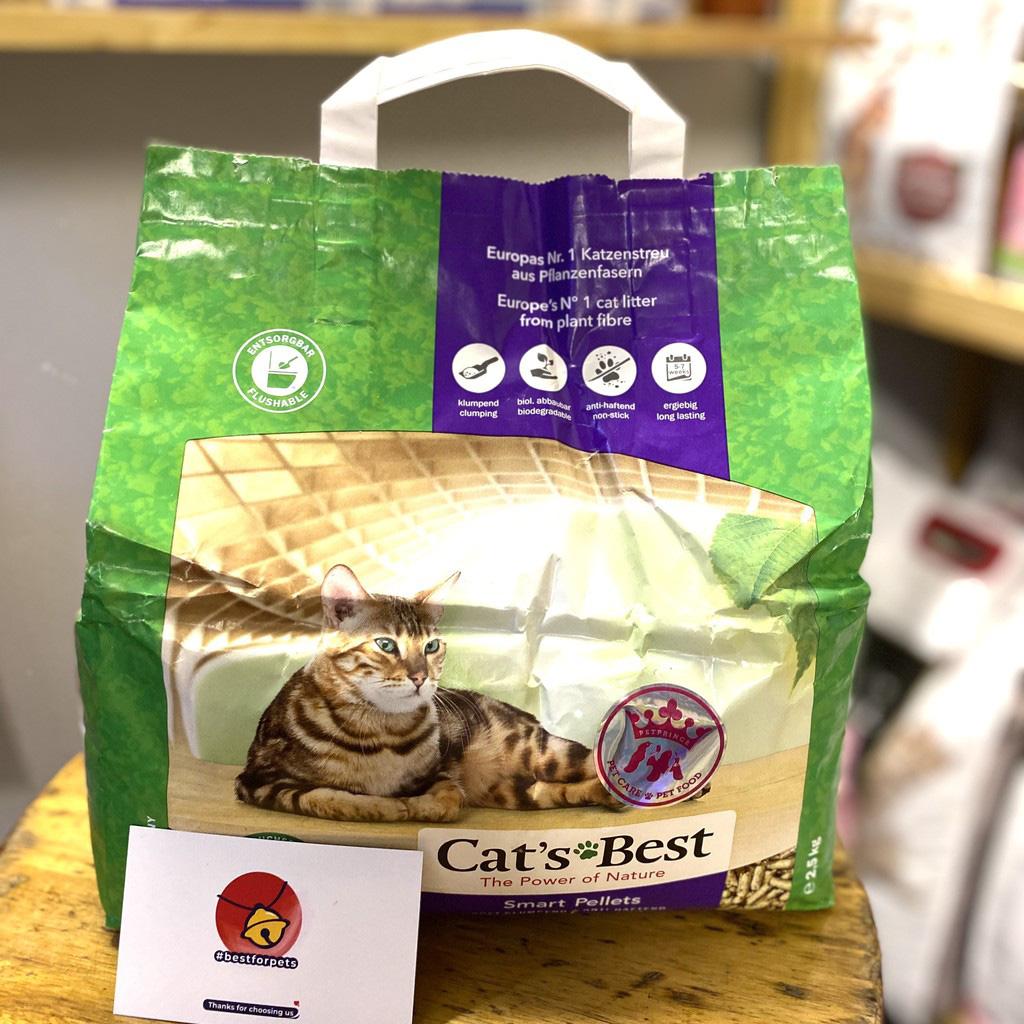 6 loại cát vệ sinh cho mèo giá chỉ từ 50k đảm bảo chuẩn ý boss - Ảnh 8.