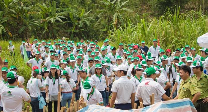Hàng trăm bạn trẻ hào hứng cùng Honda phủ xanh rừng - Ảnh 1.
