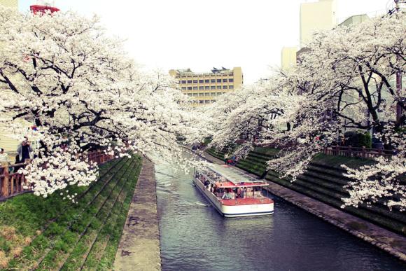 Cơ hội du lịch Nhật Bản mùa Thu dành cho 2 người - Ảnh 4.