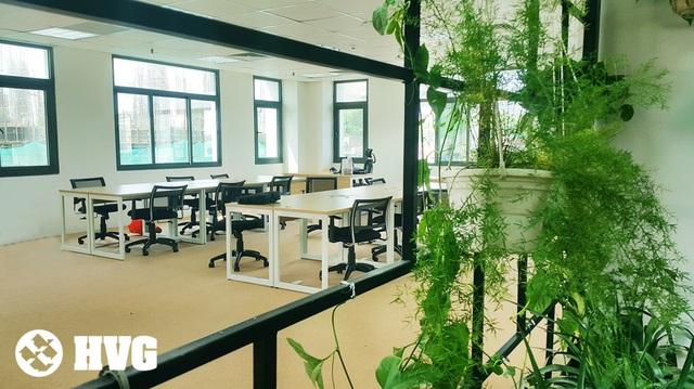 Rừng trong văn phòng hút hồn giới trẻ - Ảnh 7.