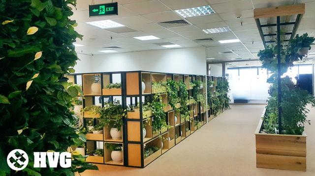 Rừng trong văn phòng hút hồn giới trẻ - Ảnh 9.