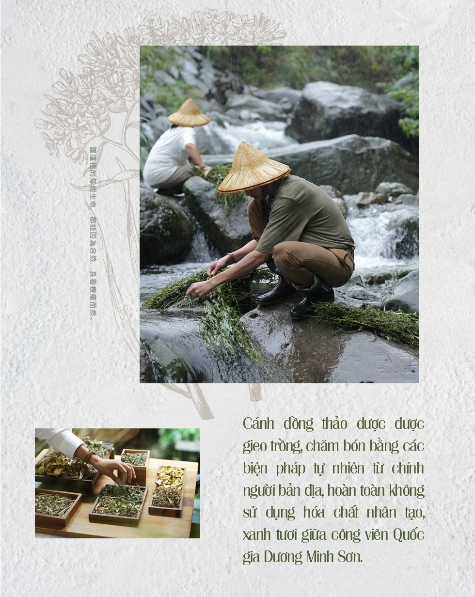 Mỗi 30 giây bán được một bánh xà phòng và câu chuyện về lòng tận tâm với thiên nhiên của Yuan - Thương hiệu chăm sóc da thảo mộc xứ Đài - Ảnh 7.