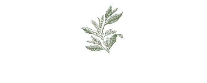 Mỗi 30 giây bán được một bánh xà phòng và câu chuyện về lòng tận tâm với thiên nhiên của Yuan - Thương hiệu chăm sóc da thảo mộc xứ Đài - Ảnh 12.