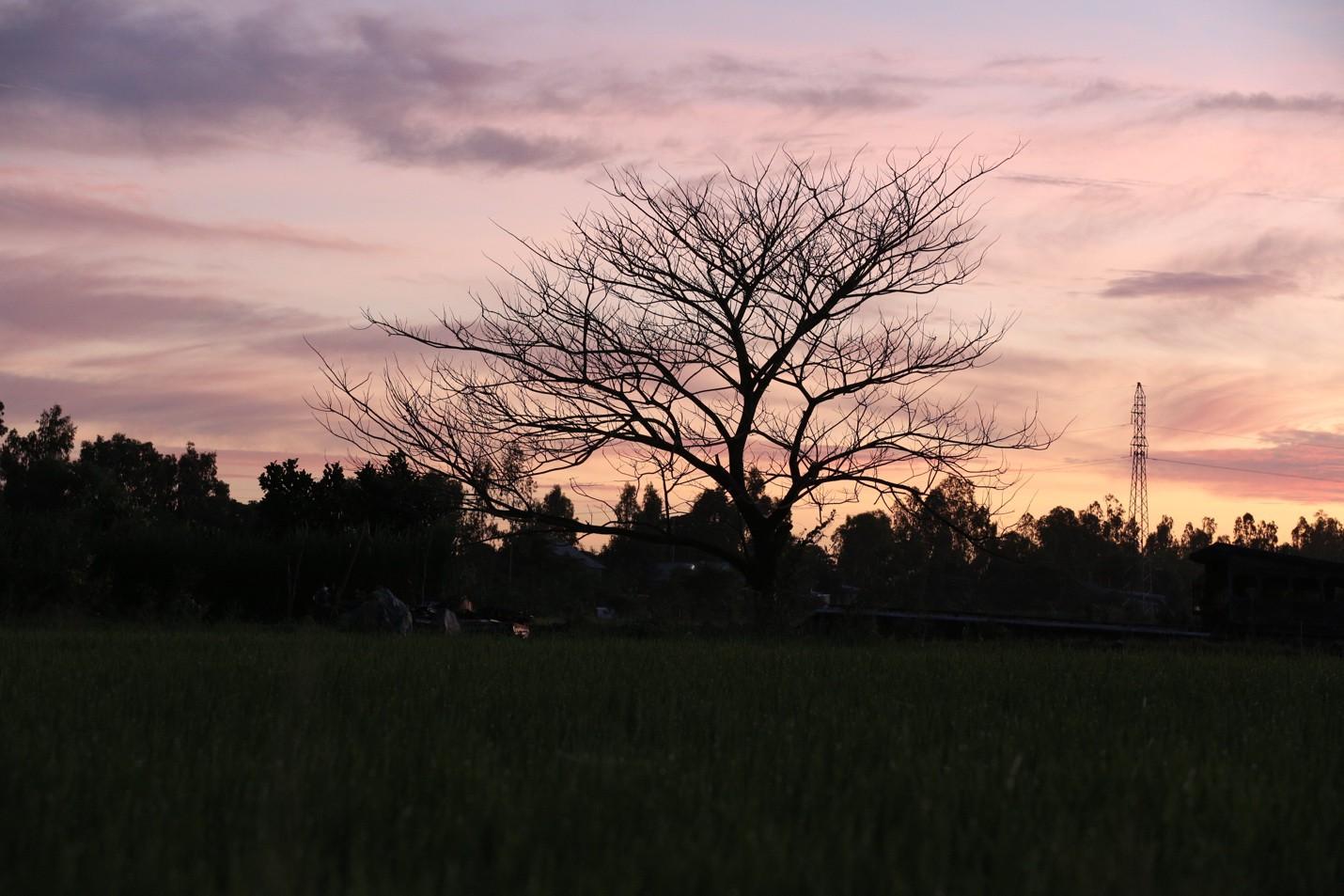 Thất Sơn Tâm Linh ghi dấu ấn với cảnh đẹp yên bình miền Thất Sơn - Ảnh 4.
