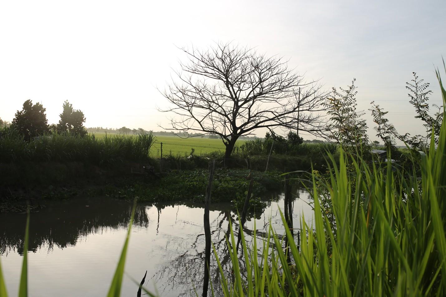 Thất Sơn Tâm Linh ghi dấu ấn với cảnh đẹp yên bình miền Thất Sơn - Ảnh 6.