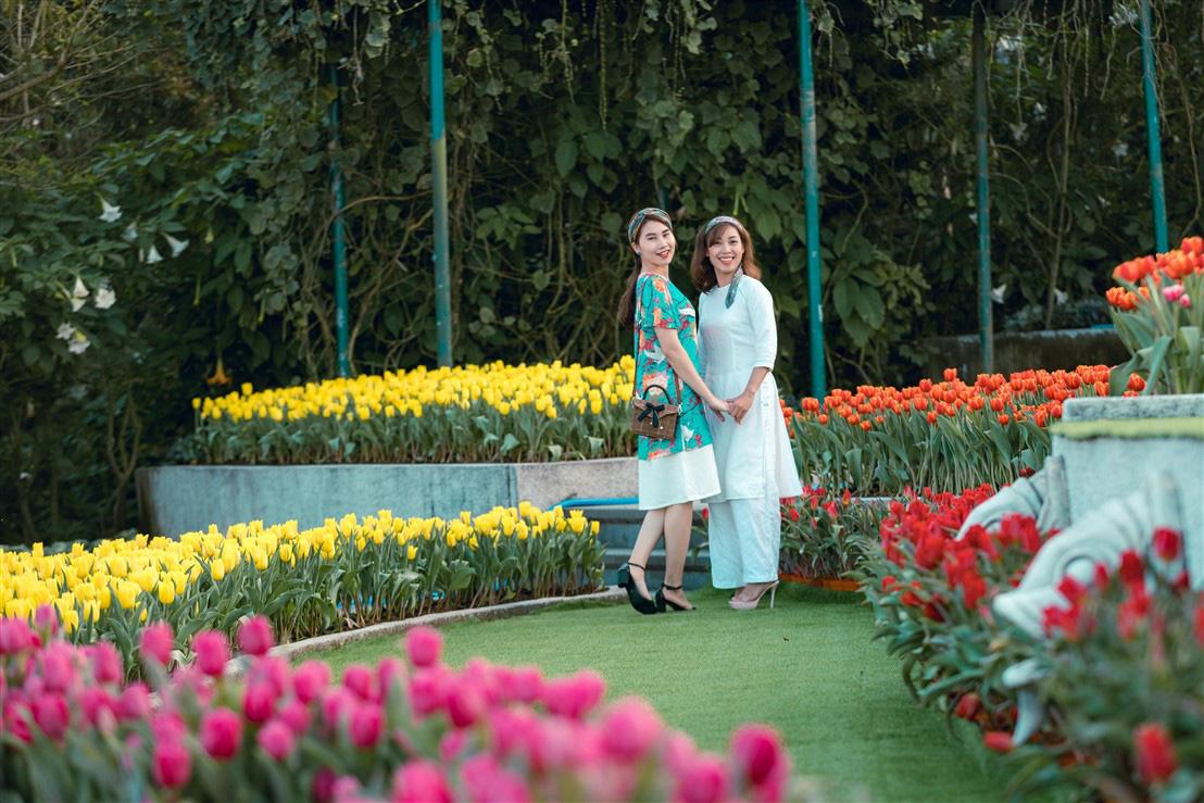 Du xuân chơi Tết, nhất định phải ghé Bà Nà ngắm thiên đường hoa tulip bậc nhất Việt Nam - Ảnh 1.