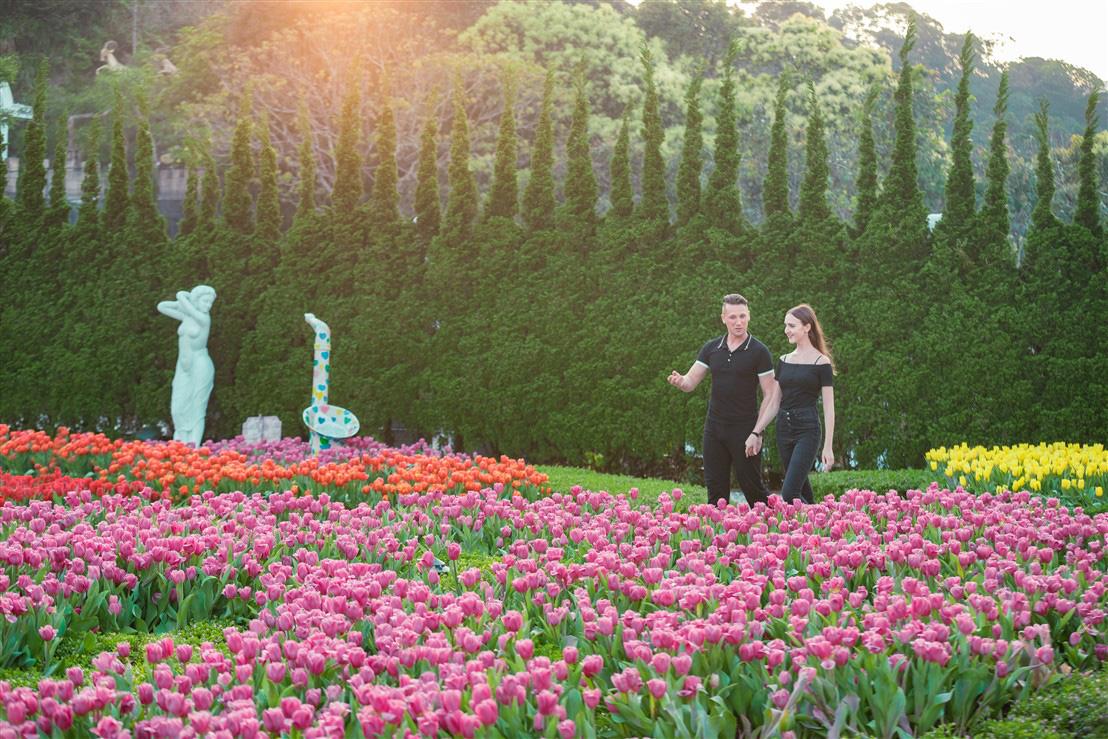 Du xuân chơi Tết, nhất định phải ghé Bà Nà ngắm thiên đường hoa tulip bậc nhất Việt Nam - Ảnh 4.