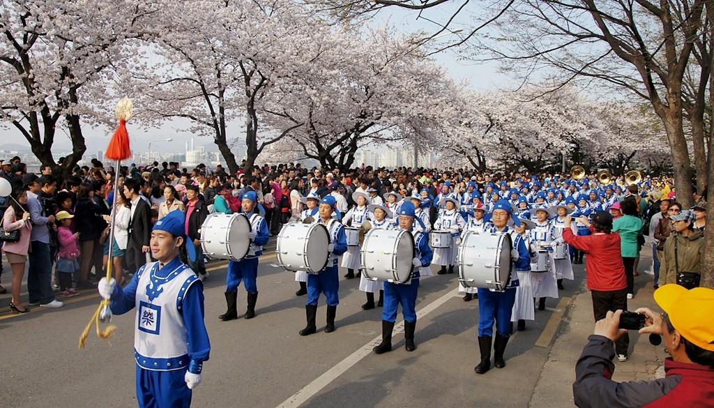 Đến Hàn Quốc vào tháng 3, tháng 4 để được đắm chìm trong thế giới lãng mạn của hoa anh đào - Ảnh 6.