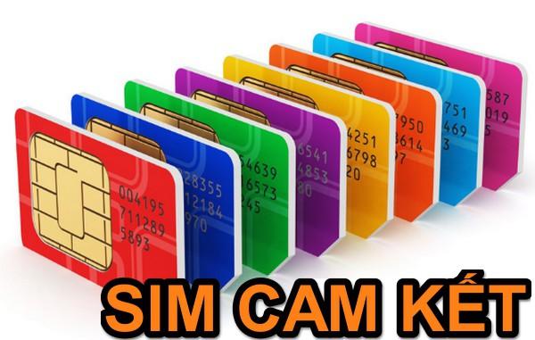Sim cam kết: lời giải bài toán tối ưu chi phí doanh nghiệp - Ảnh 1.