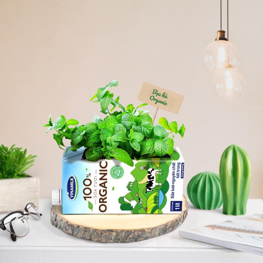 Giải mã xu hướng Organic – Cơn sốt sống xanh từ Âu, Mỹ - Ảnh 4.