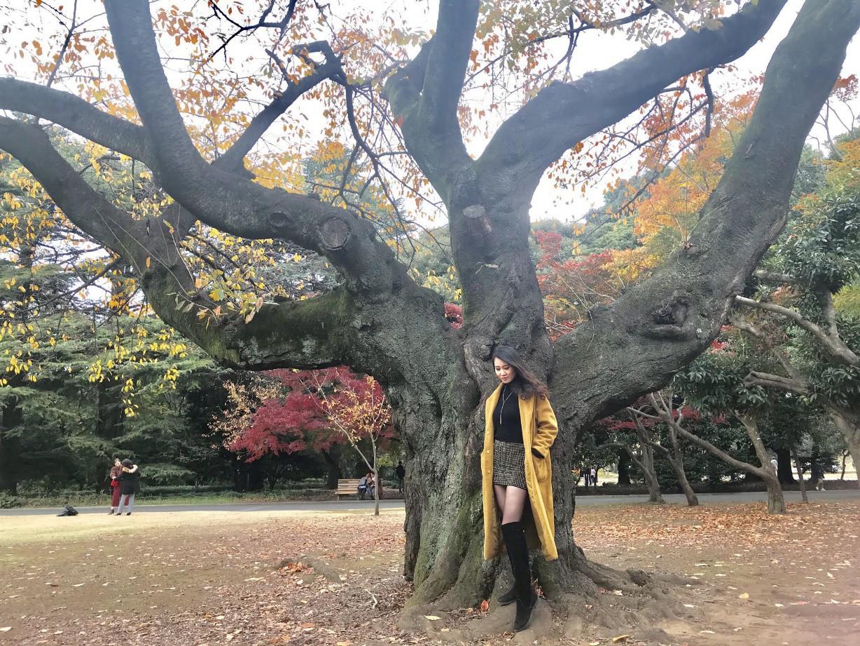 Gặp Phạm Lan Anh, cô gái mang ba dòng máu Việt - Trung – Nhật tốt nghiệp loại giỏi Thạc sĩ Kinh tế tại Tokyo - Ảnh 4.