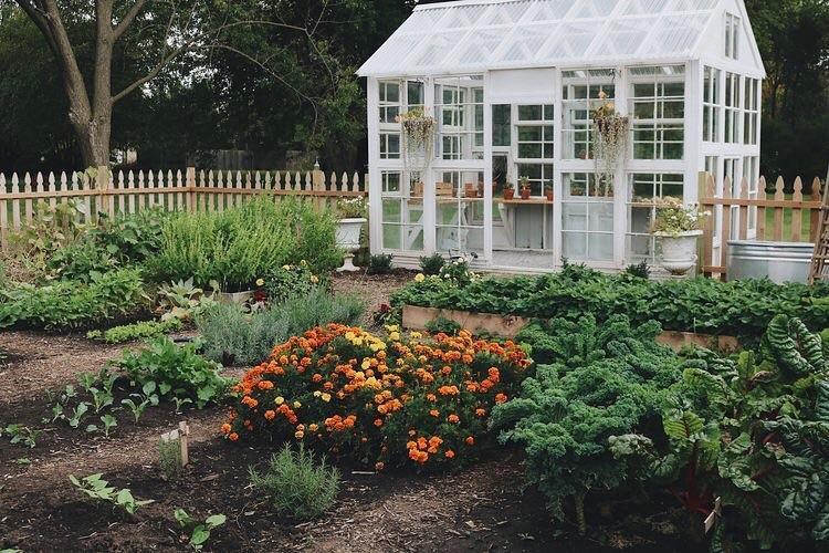 Vòng quanh thế giới: Ghé thăm những trang trại Organic siêu xinh - Ảnh 3.