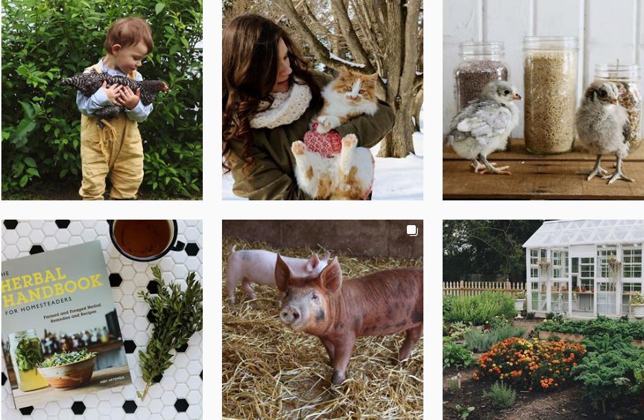 Vòng quanh thế giới: Ghé thăm những trang trại Organic siêu xinh - Ảnh 4.