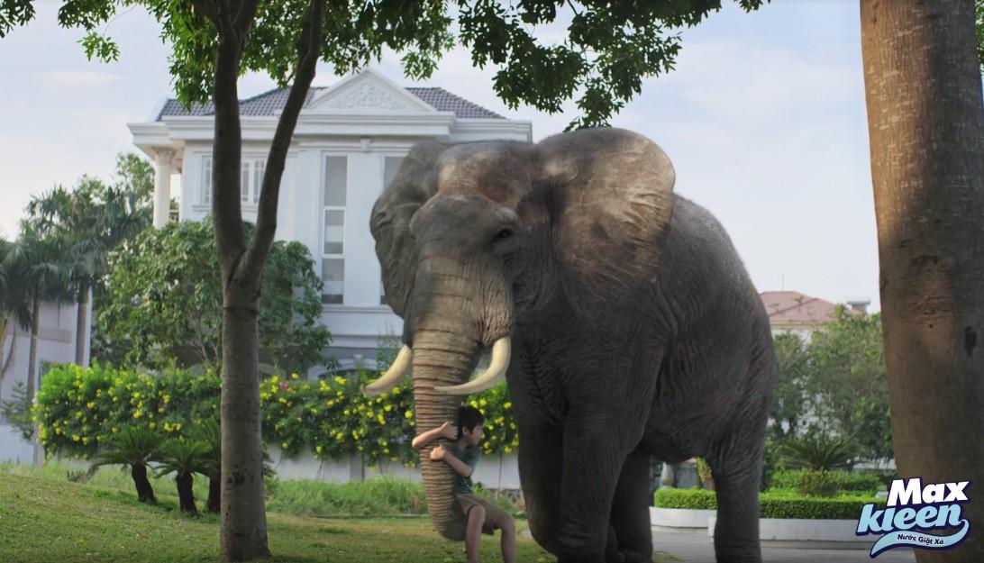 Dùng hổ và voi ẩn dụ cho hình ảnh người mẹ, thông điệp này đã chạm đến triệu trái tim phụ nữ Việt - Ảnh 4.