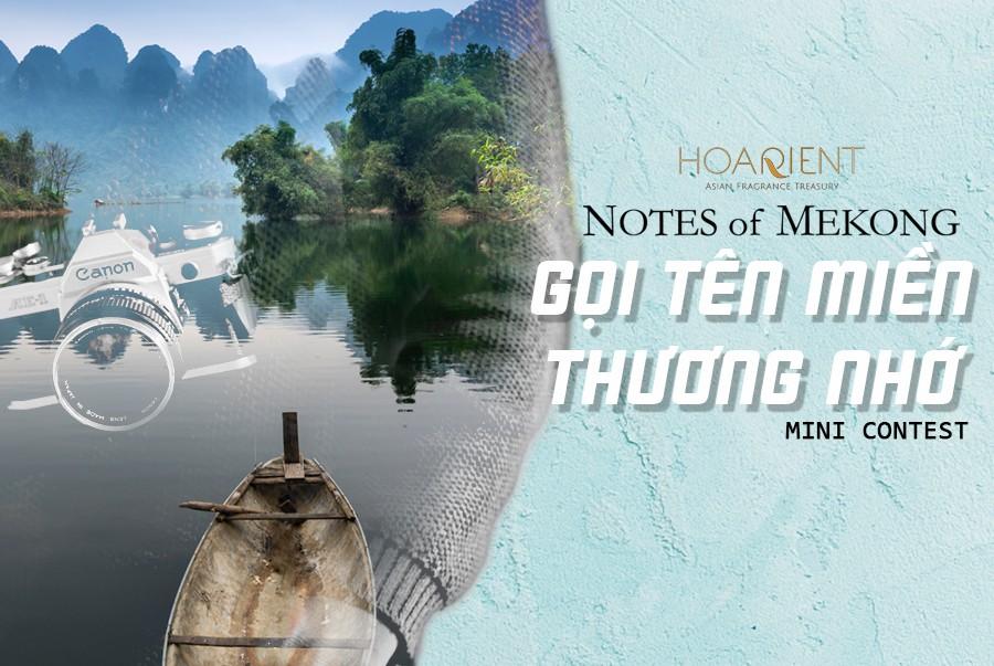 Kì ảo vẻ đẹp xứ Mekong khiến người tương tư, kẻ lưu luyến - Ảnh 6.