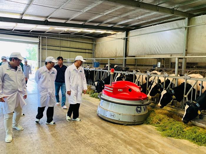 Xây dựng vùng chăn nuôi bò sữa an toàn dịch bệnh được quốc tế công nhận tại Tây Ninh - Ảnh 4.