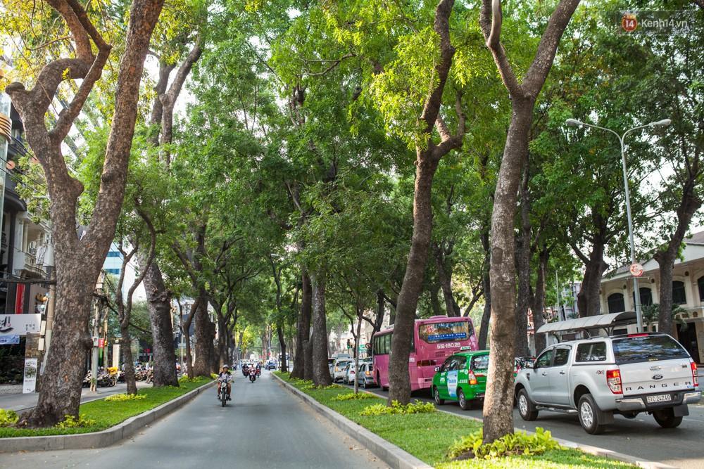 """Chẳng riêng gì """"Thỏ trắng"""" Jun Phạm, những con đường Sài Gòn xưa cũ cũng là nỗi nhớ của bao người - Ảnh 2."""