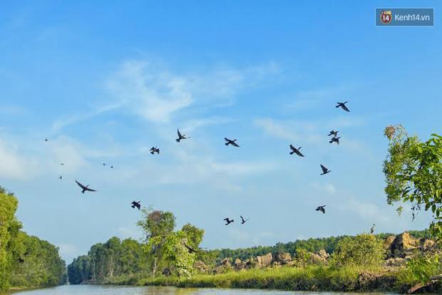 Những vườn quốc gia nổi tiếng Việt Nam bạn nhất định phải ghé thăm một lần - Ảnh 6.