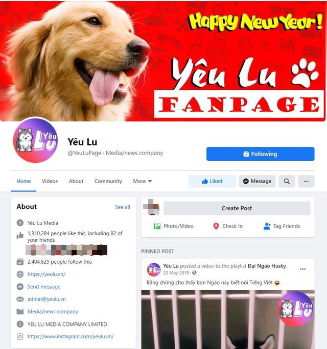 Yêu Lu: Fanpage thu hút hàng triệu tín đồ yêu thú cưng - Ảnh 1.