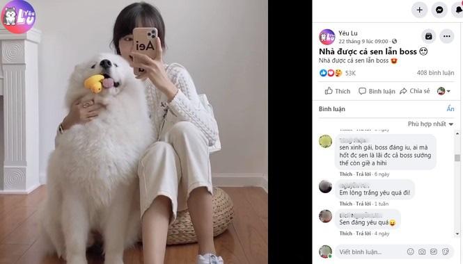 Yêu Lu: Fanpage thu hút hàng triệu tín đồ yêu thú cưng - Ảnh 5.