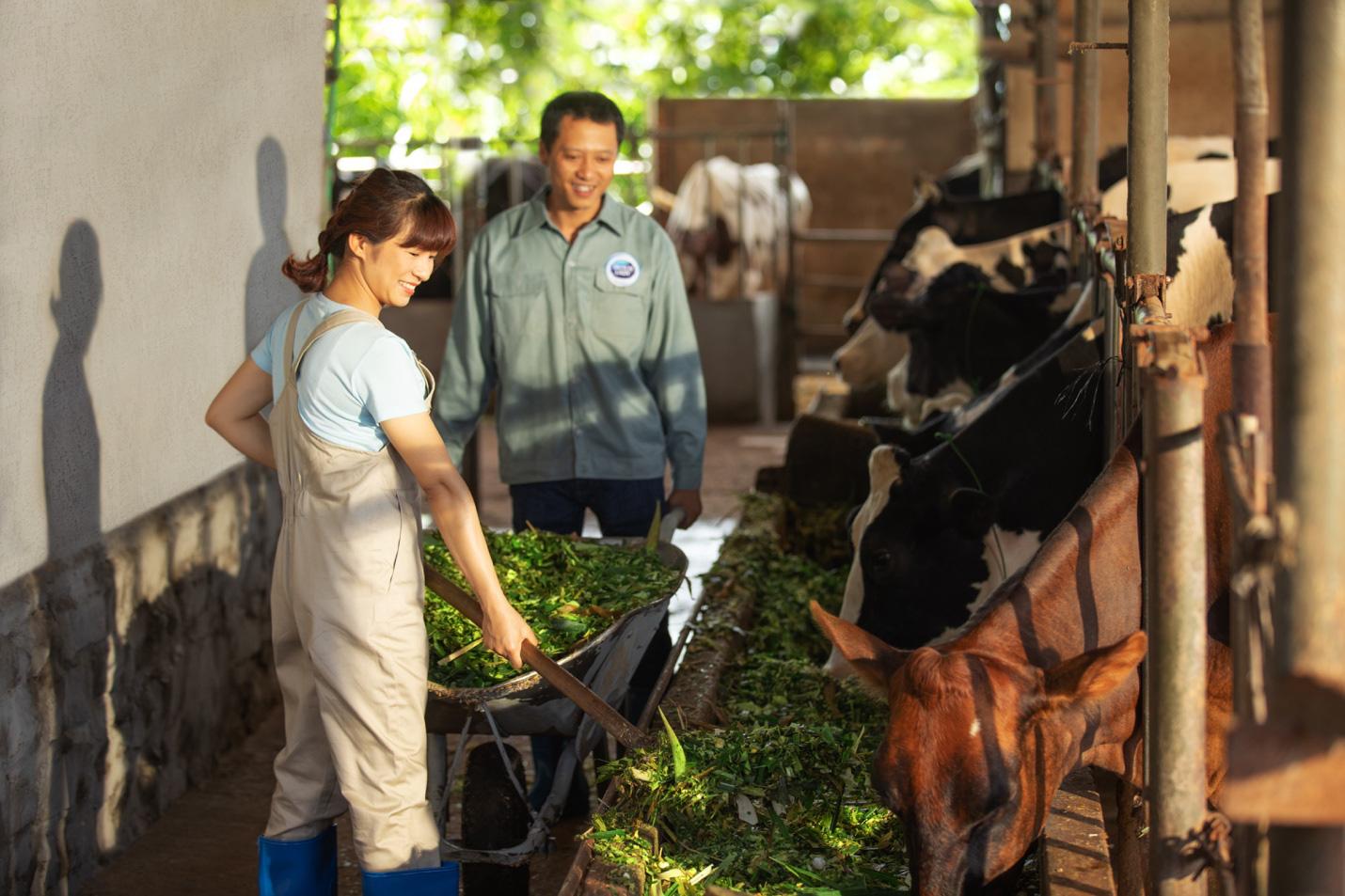 Theo chân nhiếp ảnh gia nổi tiếng: Bất ngờ trước nỗ lực sản xuất dòng sữa chuẩn Hà Lan của nhiều thế hệ nông dân Việt - Ảnh 1.