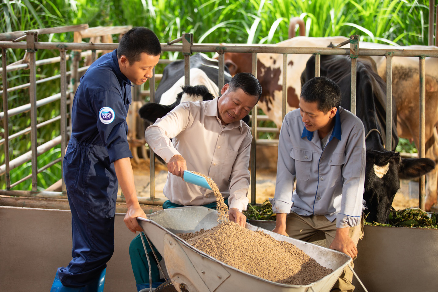 Theo chân nhiếp ảnh gia nổi tiếng: Bất ngờ trước nỗ lực sản xuất dòng sữa chuẩn Hà Lan của nhiều thế hệ nông dân Việt - Ảnh 3.