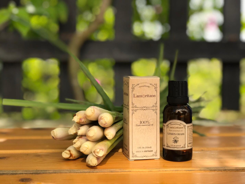 Điều trị cúm hiệu quả bằng các sản phẩm từ thiên nhiên - Ảnh 7.