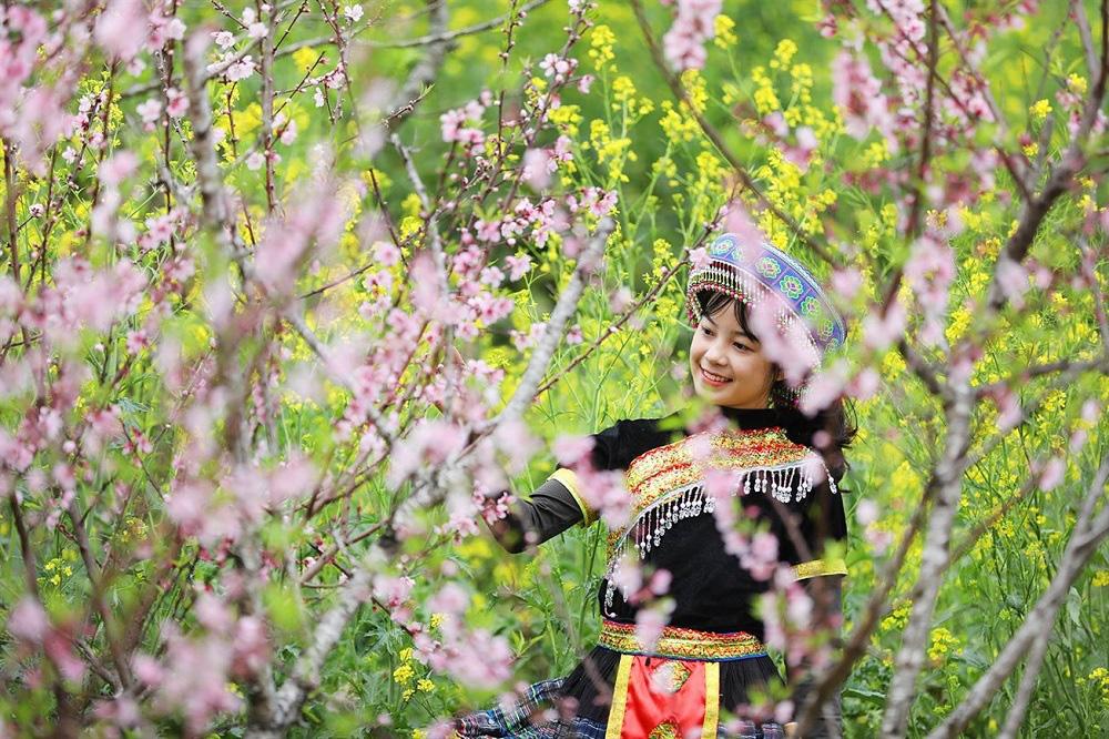Giới trẻ phát cuồng vì mùa xuân Fansipan đẹp thần sầu - Ảnh 4.