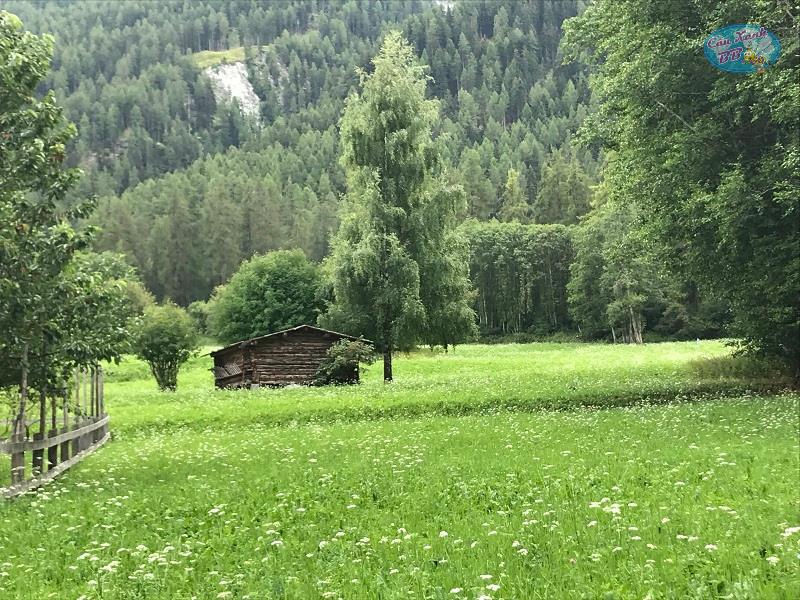 Chương trình du học hè Thụy Sĩ cả gia đình và khóa đại học ngành Du lịch Khách sạn - Ảnh 3.