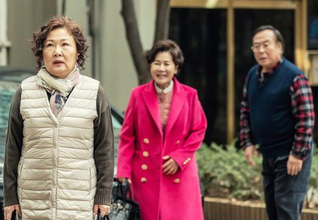 """Phim của """"Bà mẹ quốc dân"""" Hàn Quốc đạt rating siêu khủng lên sóng VTV3 - Ảnh 3."""