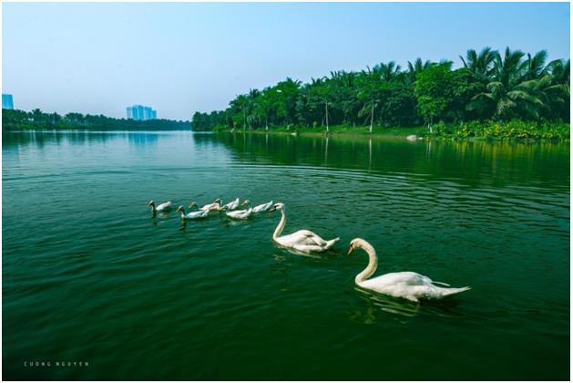 Hồ nước rộng gấp 5 lần hồ Gươm tại dự án Sky Oasis - Ảnh 2.