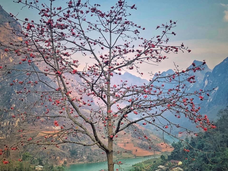 """Hậu cách ly, giới trẻ """"đổ xô"""" đi và trải nghiệm khắp Việt Nam: Lưu ngay 5 địa điểm hot được check-in nhiều nhất hiện nay - Ảnh 7."""