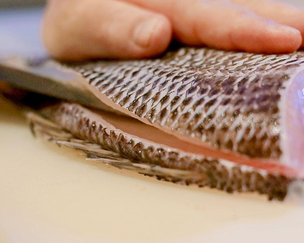 Check-in menu mùa hè đặc sắc của Sushi Hokkaido Sachi - Ảnh 1.