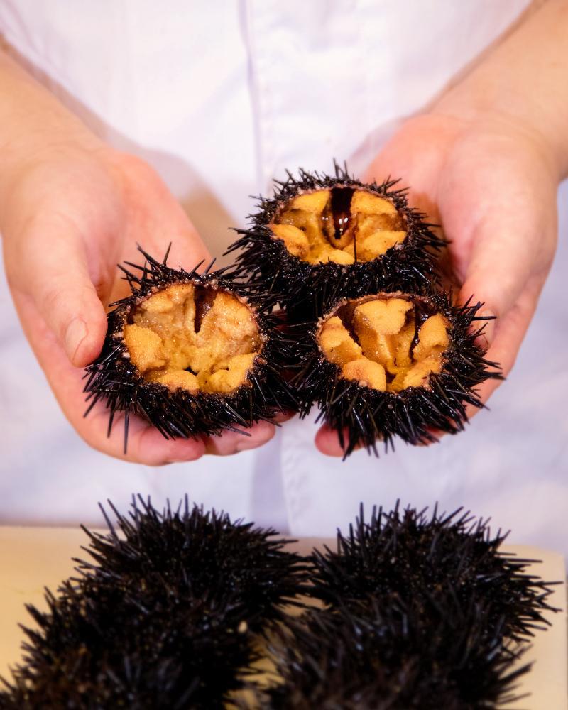 Check-in menu mùa hè đặc sắc của Sushi Hokkaido Sachi - Ảnh 7.