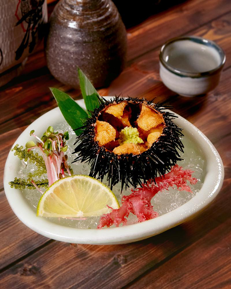Check-in menu mùa hè đặc sắc của Sushi Hokkaido Sachi - Ảnh 8.