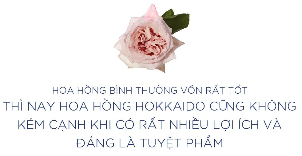 """Hè năm nay, hãy kết nạp """"siêu phẩm hoa hồng Hokkaido vào công cuộc skincare để mang thanh xuân về cho làn da của bạn - Ảnh 5."""