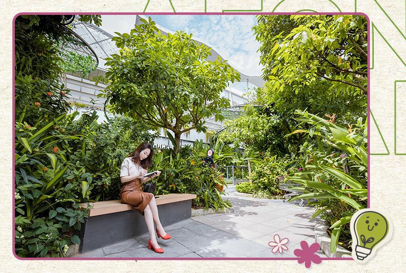 Chạy đâu cho khỏi nắng hè, thẳng tiến TTTM xanh mát như vườn Bách Thảo này thôi! - Ảnh 8.