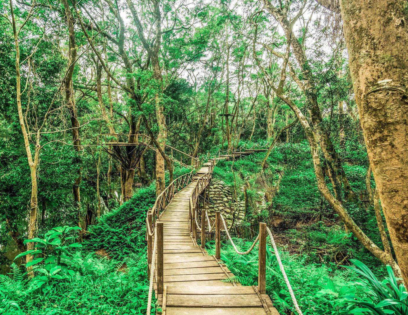 Công viên Ozo – ngôi sao mới của du lịch Quảng Bình - Ảnh 1.